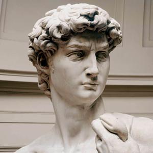 Michelangelo_david_1504
