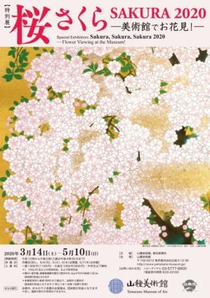 Yamatane-sakura-202001
